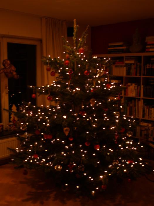 Unser Weihnachtsbaum 2007