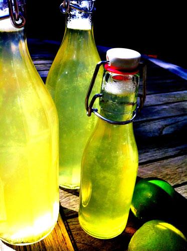 Limetten-Ingwer-Sirup