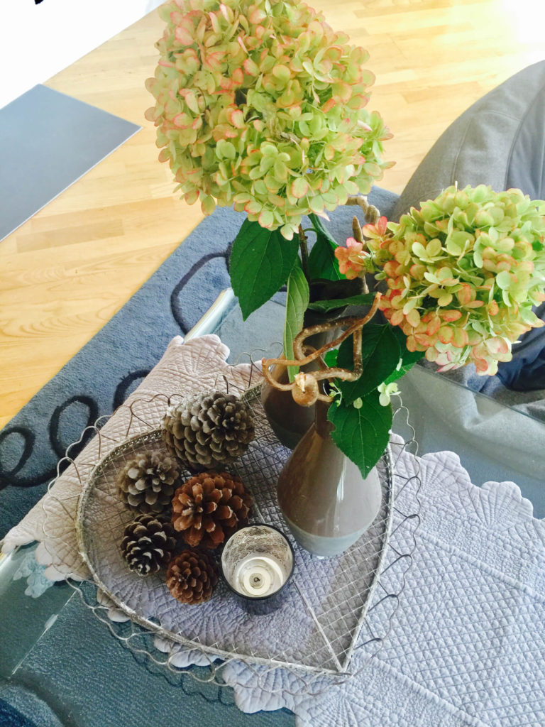 Meine Herbst-Deko mit Zapfen, Hortensien und Erika Dekorieren