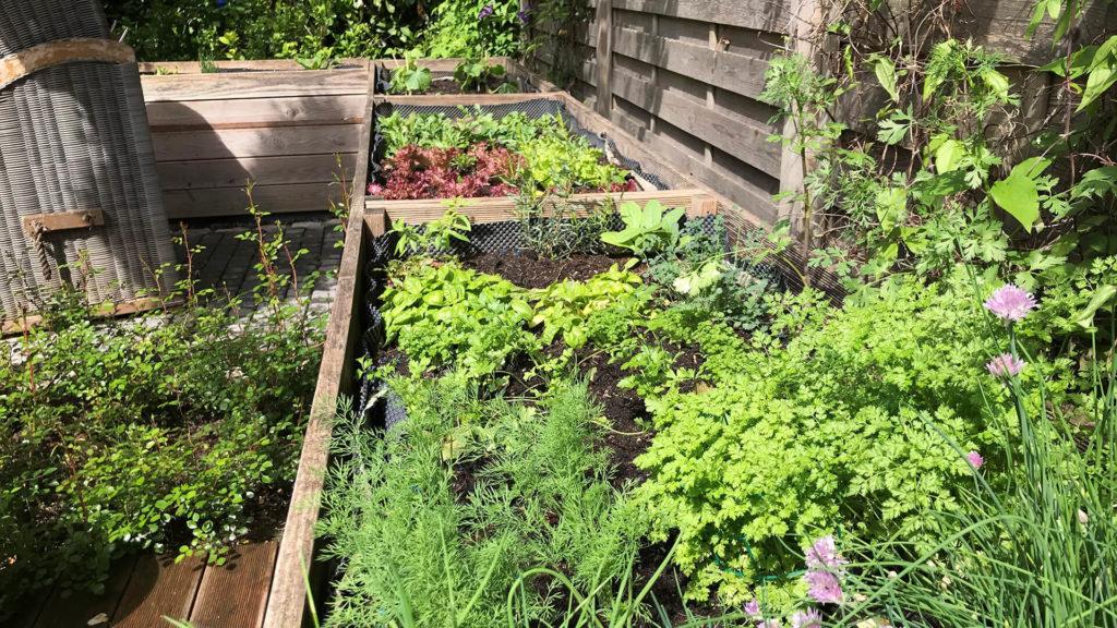 Garten & Lounging